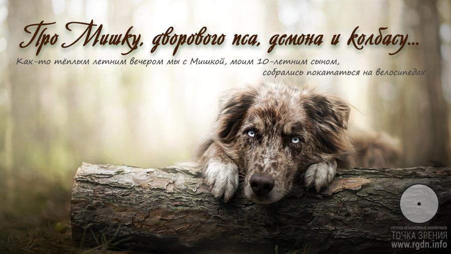 Про Мишку, дворового пса, демона и колбасу...