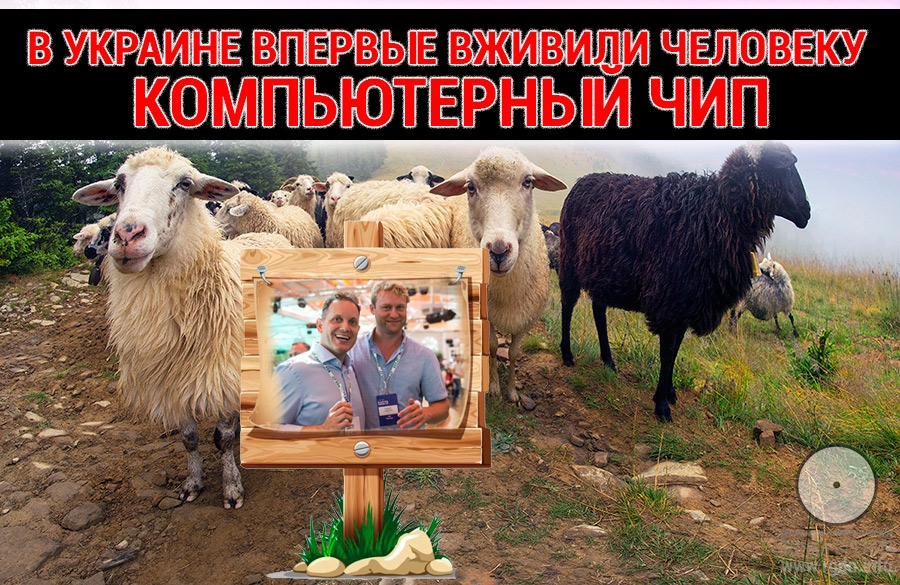 В Украине впервые вживили человеку компьютерный чип.