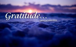 Благодарность…