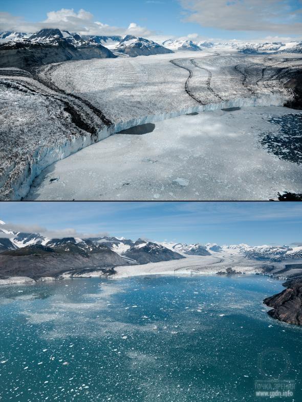 Global warming essay hindi language : Prothesis covers