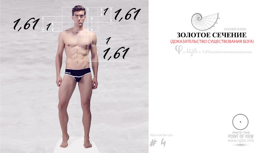 фотографии мужского тела по золотой пропорции