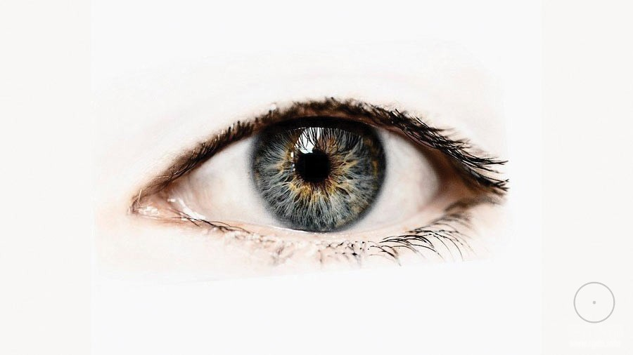 глаз, внимание