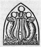 Положительная символика змеи, урей