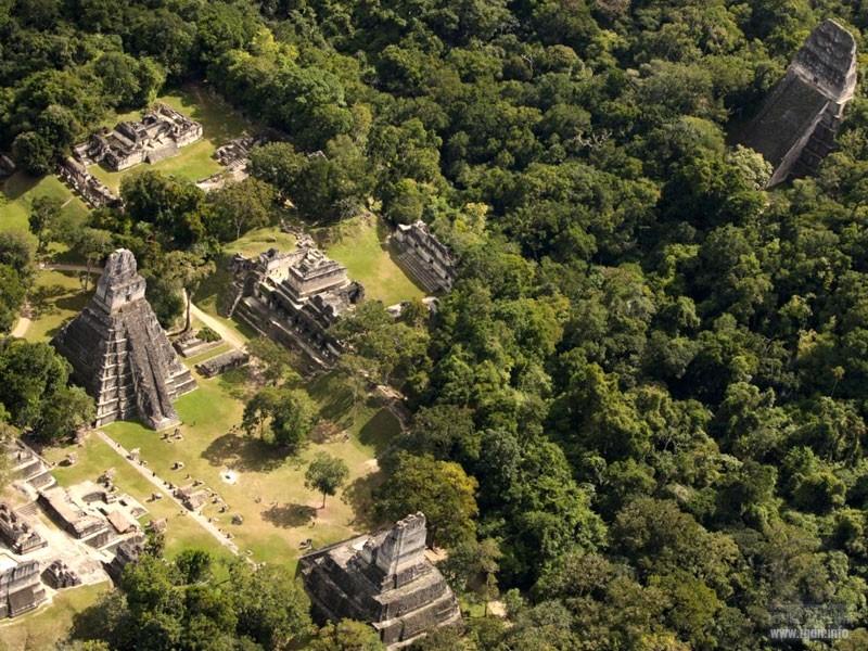 Тикаль, мексиканские пирамиды майя