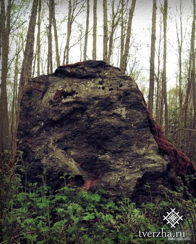 Рудаевское каменное гнездо. Тверская обл.