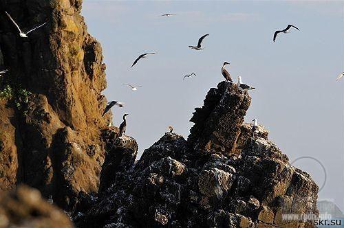 Мыс Стукамбис – остров Сахалин (крупнейший остров России)