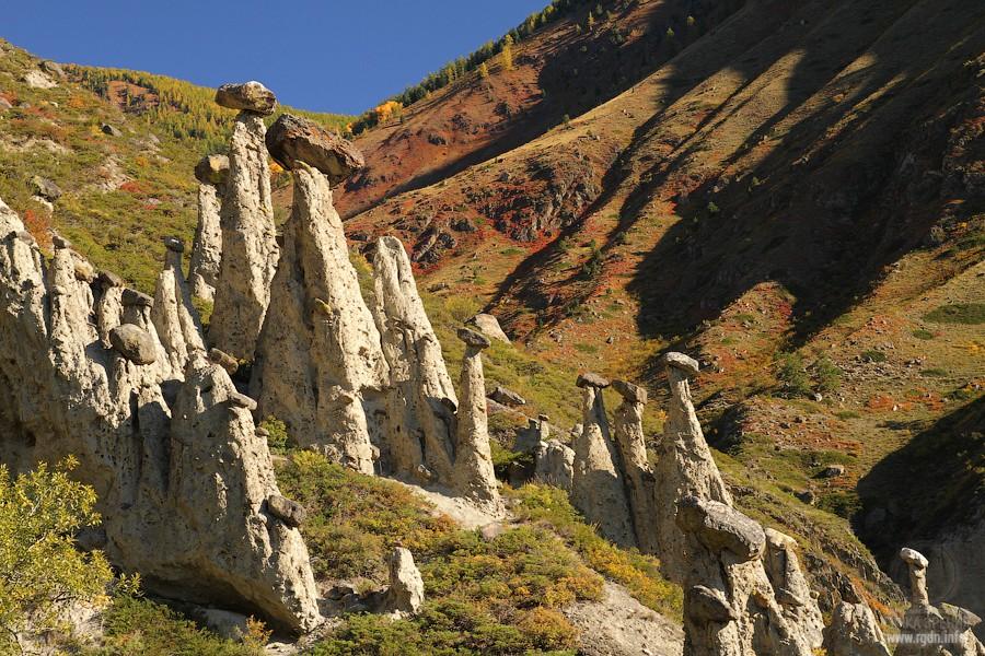 Каменные грибы урочища Ак-курум, Республика Алтай