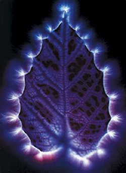 The Method Is Called Kirlians Effect Or Kirlian Photography It Was Officially Registered And Obtained Numerous Inventor Certificates On